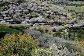 Extremadura y valle del jerte