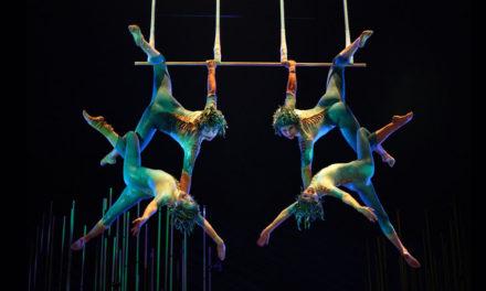 Norte de Europa: Cenas Gratis y Cirque du Soleil