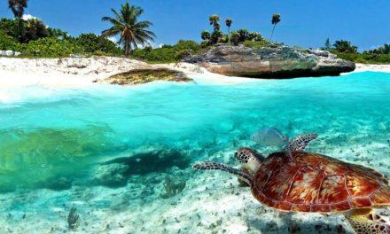 Super Oferta – Riviera Maya