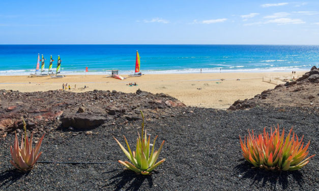 Ofertas Agosto – Fuerteventura